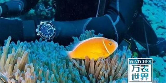 深度剖析潜水表:潜水表的常见问题